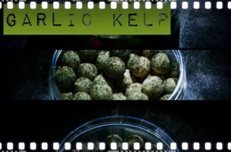 Garlik Kelp Freetime6_350x250